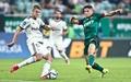 Nhận định Napoli vs Legia Warszawa: Chiến thắng nhọc nhằn