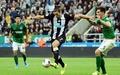Nhận định Newcastle vs Brighton, 20h00 ngày 20/09, Ngoại hạng Anh