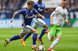 Nhận định Schalke vs Wolfsburg, 21h30 ngày 21/11, VĐQG Đức
