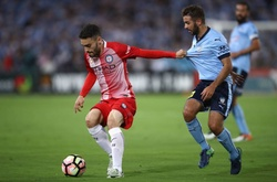 Nhận định Melbourne City vs Sydney FC, 15h05 ngày 23/02, VĐQG Úc