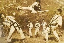 Taekwondo nguyên thủy và hành trình trở thành môn quốc võ, môn chính thức tại Olympic