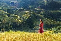 Hoa khôi bóng chuyền Phạm Thị Yến lung linh giữa khung trời Hà Giang