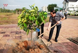 Mekong Delta Marathon lan tỏa thông điệp bảo vệ môi trường bằng trồng mới hàng nghìn cây xanh