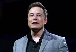 Elon Musk tham gia ban giám đốc công ty mẹ của UFC?
