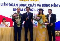 Thành lập LĐ Bóng chày và Bóng mềm Việt Nam
