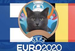 Mèo tiên tri dự đoán bóng đá EURO hôm nay 21/6: Phần Lan vs Bỉ