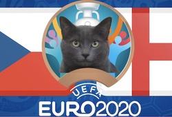 Mèo tiên tri dự đoán bóng đá EURO hôm nay 22/6: CH Séc vs Anh