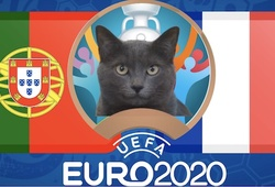 Mèo tiên tri dự đoán bóng đá EURO hôm nay 23/6: Bồ Đào Nha vs Pháp