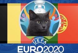 Mèo tiên tri dự đoán bóng đá EURO hôm nay 27/6: Bỉ vs Bồ Đào Nha