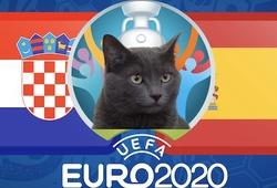 Mèo tiên tri dự đoán bóng đá EURO hôm nay 28/06: Croatia vs Tây Ban Nha