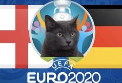 Mèo tiên tri dự đoán bóng đá EURO hôm nay 29/06: Anh vs Đức