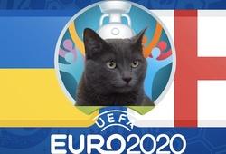 Mèo tiên tri dự đoán bóng đá EURO hôm nay 03/07: Ukraine vs Anh
