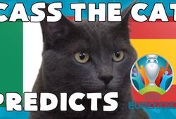Mèo tiên tri dự đoán bóng đá EURO hôm nay 06/07: Italia vs Tây Ban Nha