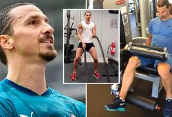 Ibrahimovic nhận lời đề nghị bất ngờ từ các nhà khoa học