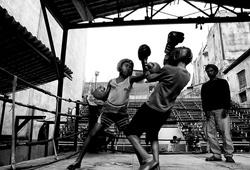 Nghịch lý võ thuật, phòng tập càng 'tàn', càng có nhiều nhà vô địch