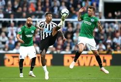 Link xem trực tiếp Newcastle vs Brighton, Ngoại hạng Anh 2020