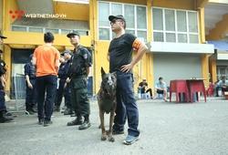 Chó nghiệp vụ tham gia đảm bảo an ninh trận Hà Nội FC vs Hải Phòng