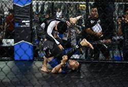 Chiều nay, Đại hội thành lập Liên đoàn MMA Việt Nam