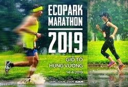 Những sự kiện thể thao, chạy bộ không thể bỏ lỡ trong quý 2 năm 2019