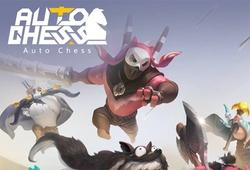 Auto Chess chuẩn bị ra phiên bản chính thức