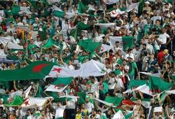 Chung kết CAN Cup 2019: Algeria huy động 28 máy bay chở 4.800 CĐV sang Ai Cập