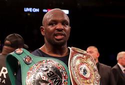 WBC cắt quyền khiêu chiến Deotay Wilder của Dillian Whyte vì doping