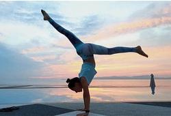 8 trường phái Yoga phổ biến ở Việt Nam hiện nay
