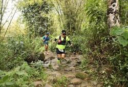 Vietnam Mountain Marathon 2019: Thử thách trên những ngọn giáo xanh