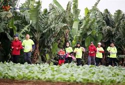 Hanoi City Trail 2020 mở đăng ký với giá cực ưu đãi