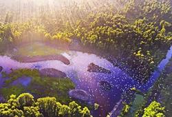 """Lung Ngọc Hoàng - """"thiên đường thiên nhiên"""" đẹp choáng ngợp tại Hậu Giang"""