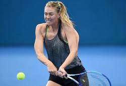 Sharapova bỏ giải Brisbane International