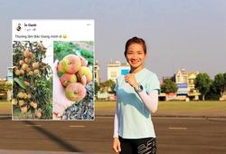 """Gia đình Nguyễn Thị Oanh được cộng đồng """"giải cứu vải"""" mùa dịch COVID-19"""