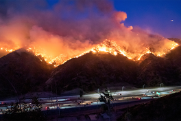 Gia đình LeBron James phải di tản ngay trong đêm vì cháy rừng tại California