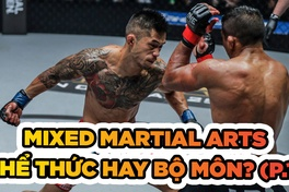 Mixed Martial Arts - Thể thức thi đấu hay bộ môn võ thuật (P.1)