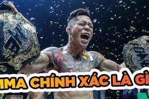 Mixed Martial Arts - MMA: Định nghĩa đúng và đầy đủ