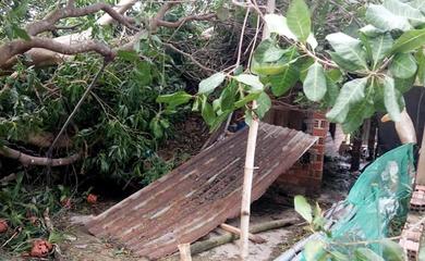 Căn nhà tuổi thơ Hồng Lệ ở quê Bình Định tan hoang vì bão số 9