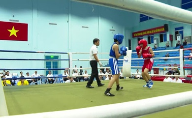 """Boxing Việt Nam: Chuyện một giải đấu phải """"cấp cứu"""" giữa giông bão (Kỳ 1)"""