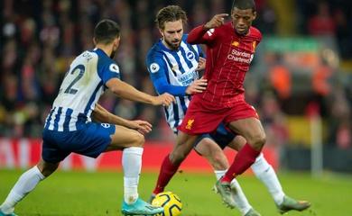 Lịch trực tiếp Bóng đá TV hôm nay 28/11: Brighton vs Liverpool