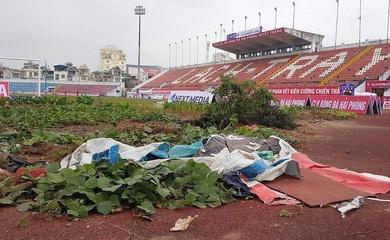 CLB Hải Phòng dọn dẹp, làm sạch khu trồng rau tại SVĐ Lạch Tray
