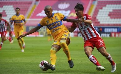 Nhận định Tigres UANL vs Necaxa, 10h00 ngày 29/01, VĐQG Mexico