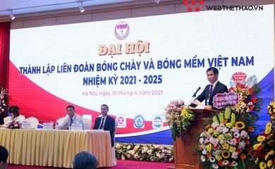 Liên đoàn Bóng chày và Bóng mềm Việt Nam chính thức ra mắt