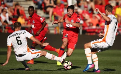 Nhận định Brisbane Roar vs Adelaide United, 12h05 ngày 13/06