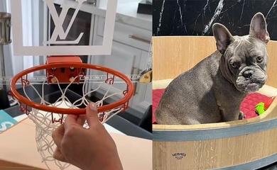 Choáng váng với giá tiền chiếc rổ Louis Vuitton dành cho... cún cưng
