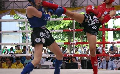 Muay Việt Nam dự kiến tranh tài ở giải Vô địch thế giới tại Thái Lan