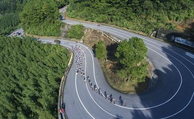 Trực tiếp đua xe đạp VTV Cup 2020 hôm nay