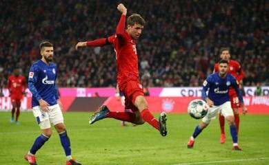 Lịch sử đối đầu, đội hình dự kiến Bayern vs Schalke 04