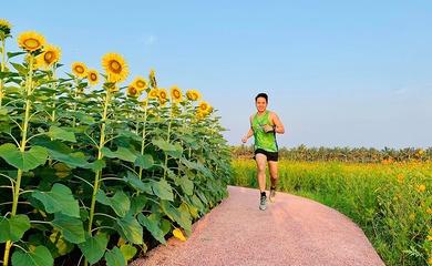 Cách đăng ký giải chạy Ecopark Marathon 2020