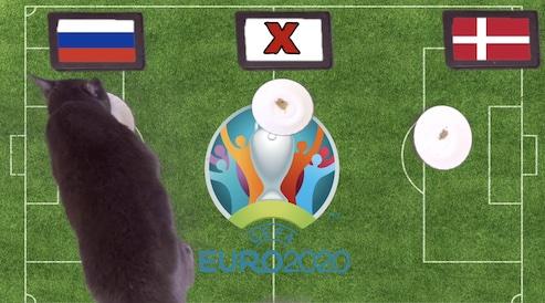 Mèo tiên tri dự đoán kết quả bóng đá Nga vs Đan Mạch