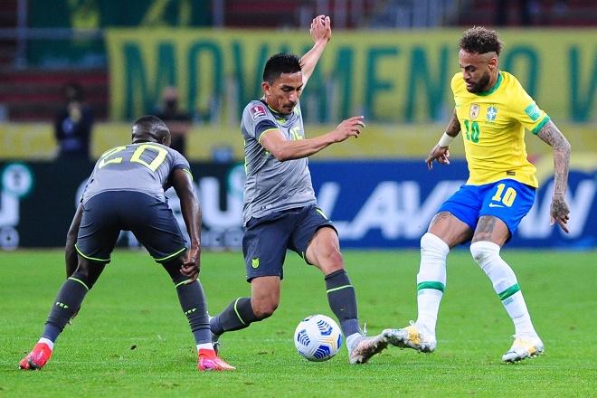 Link xem trực tiếp Brazil vs Ecuador, bóng đá Copa America 2021