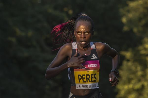 Đồng hương Eliud Kipchoge phá kỷ lục thế giới bán marathon nữ